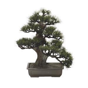 盆栽造花松