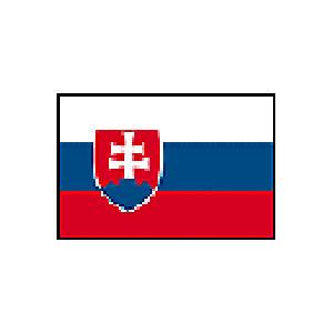 国旗120 スロバキア