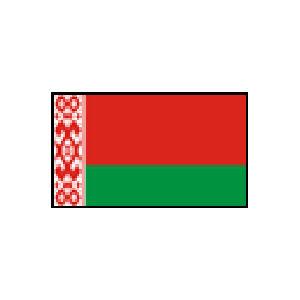 国旗120 ベラルーシ