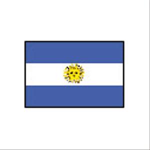 卓上国旗 アルゼンチン