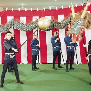 蛇踊り10人用本体 玉付